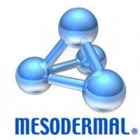 Mesodermal